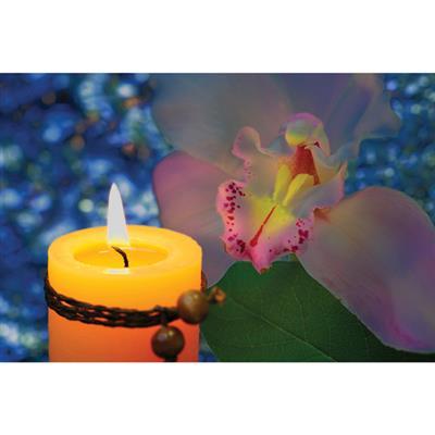 Zestaw świec zapachowych, brązowy/żółty-544450